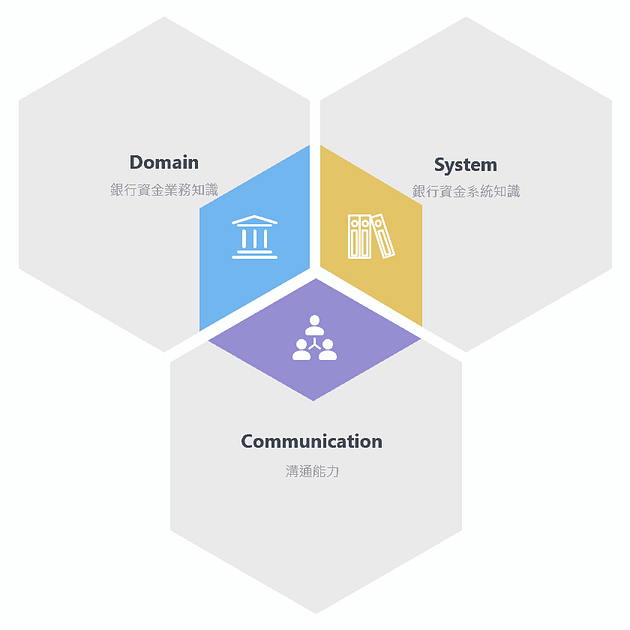 Treasury System Consultant 3 abilities 金融系統顧問需要具備的 3 種能力